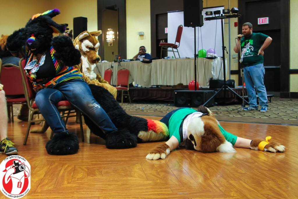 Alas and alack! A furry lost their musical chair at Collision Vs. Monsters - © 2014 by John N. Collins