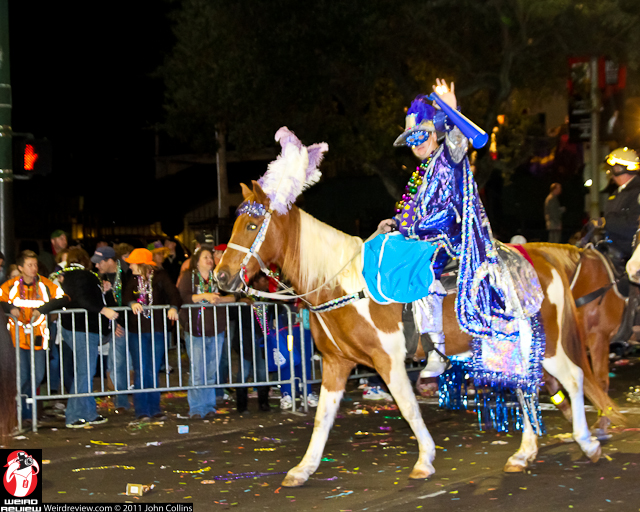 A Mardi Gras rider waves to the crowd and to our readers