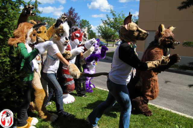 Friendly furries at Condition: Wasteland last weekend in London, Ontario