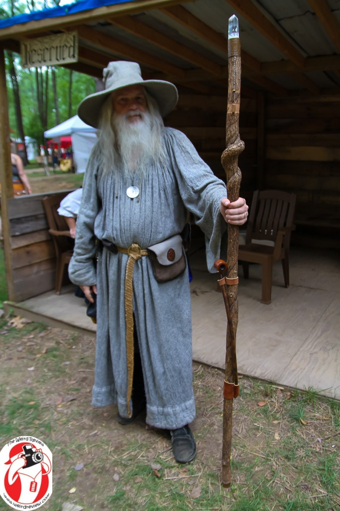 You may even find a familiar face of wizardry at the Blackrock Renaissance Festival ©2015 John N Collins